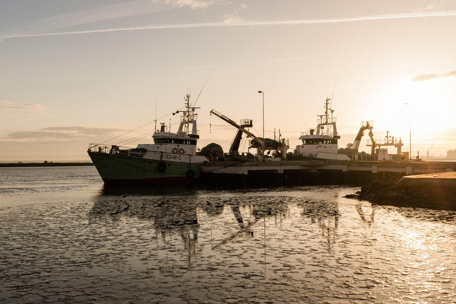 Cruiser powerboat